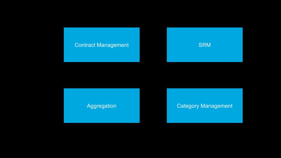 Fulfilling categories Kraljic Matrix 21st Century Model